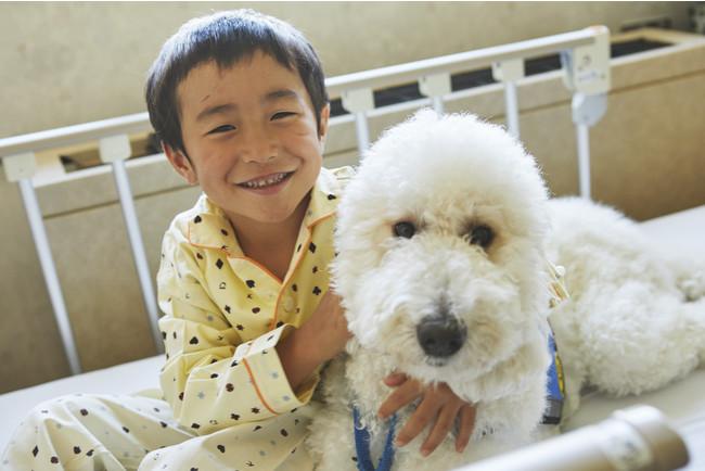 DogIntervention(犬の介入事業)