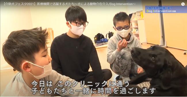 Dog Intervention活動紹介