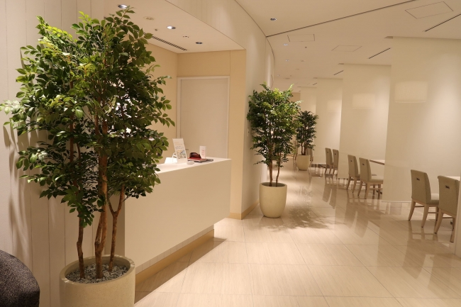 待合やサロンなどの空間もグリーンで抗菌化。