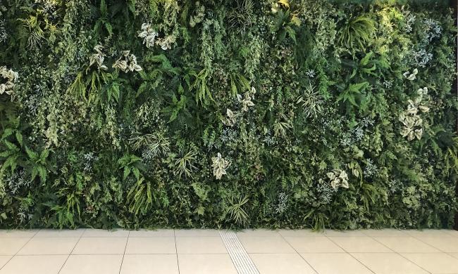 壁面緑化で緑視効果と抗菌でW効果!