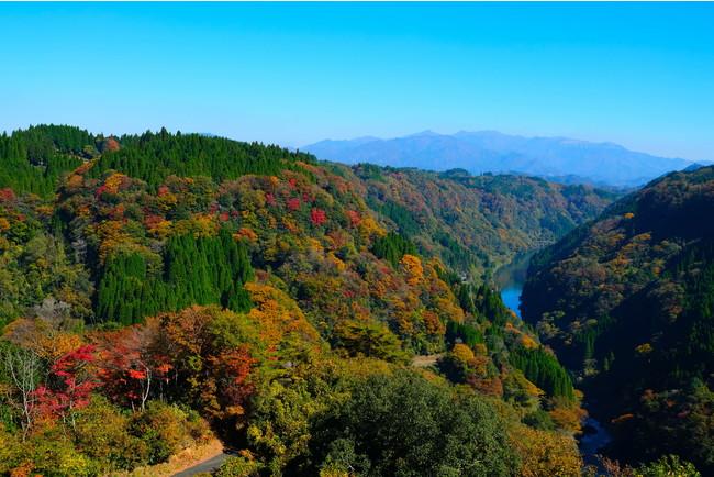 写真提供:熊本県山都町
