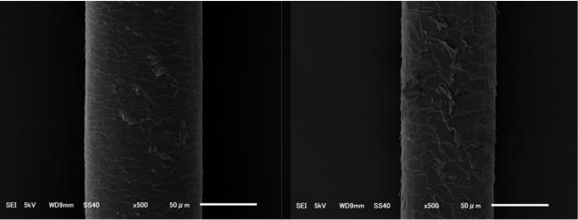 電子顕微鏡で撮影した髪の状態
