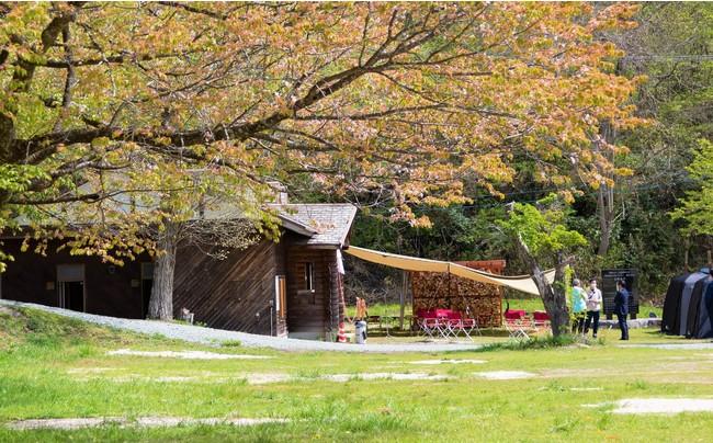 鵜の池公園 キャンプ場