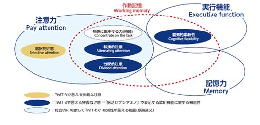 参考:Suzuki H, et al., (2020) Front. Nutr