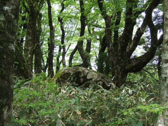 イザナミノミコトの陵墓と伝わる比婆山御陵