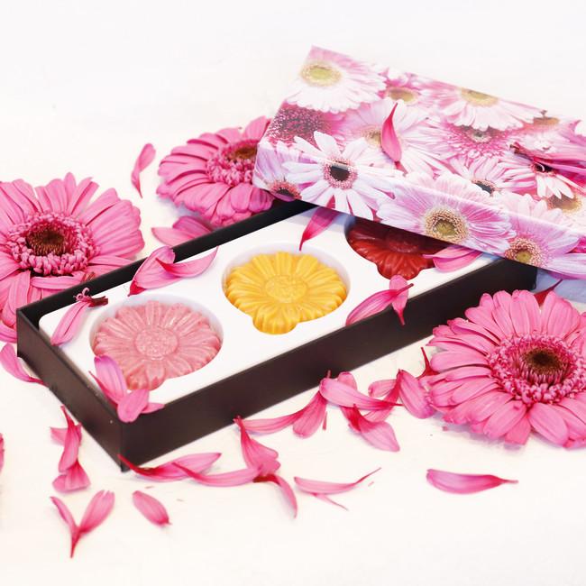 ピンクガーベラの花言葉「感謝」