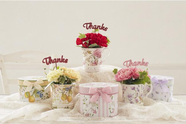 カーネーションの花言葉「感謝」