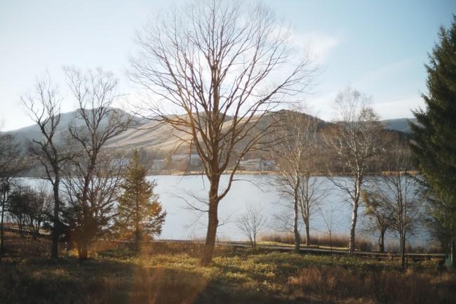 SANU 2nd Home の展開予定地の1つ、白樺湖の風景