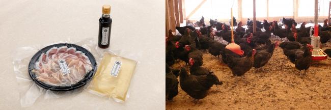 淡海地鶏の鶏すき焼きセット ¥5,980(税込) 滋賀県 川中さんの「淡海地鶏」を使用