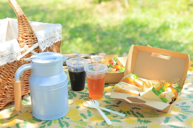 美山の食材をたっぷり使ったピクニックランチ