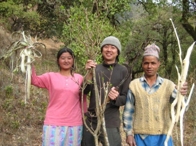 カレンダー手漉き紙の原料・ロクタは、  三椏(みつまた)種の木の繊維でヒマラヤの山間部で一枚一枚、  とても素朴な製法で作られています。  防カビ性や防虫性も併せ持ち、  現地では「1000年もつ紙」と言われています。