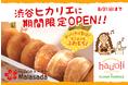 ハワイで人気!ふわもちマラサダドーナツが渋谷ヒカリエに期間限定出店【hau'oliハウオリ】