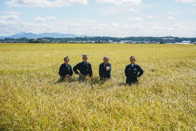 「ASAKAMAI 887」の生産者たち
