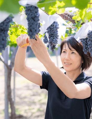 フジッコワイナリー(株) ワイン事業課 チーフワインメーカー 鷹野ひろ子氏