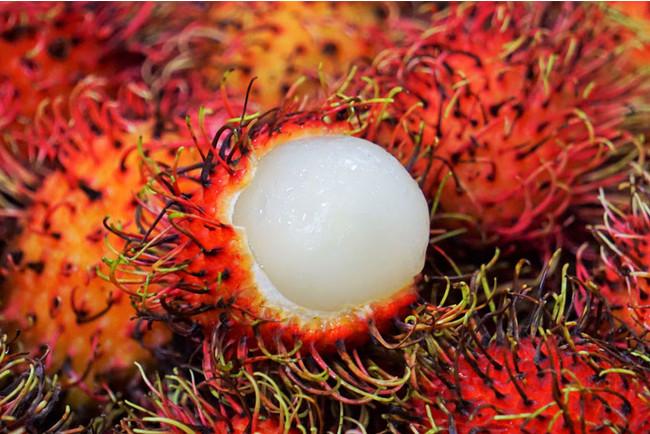 もじゃもじゃで硬い殻の中には半透明の果肉
