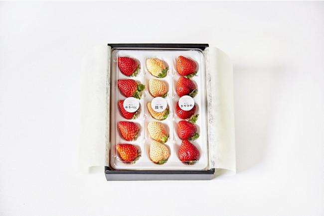 【バレンタイン限定】おすすめいちご食べ比べ15粒セット(※品種組み合わせは一例、ギフトの形状は変更になることがございます)
