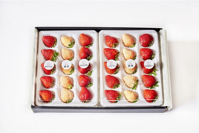 バレンタイン限定】おすすめいちご食べ比べ30粒セット(※品種組み合わせは一例、ギフトの形状は変更になることがございます)