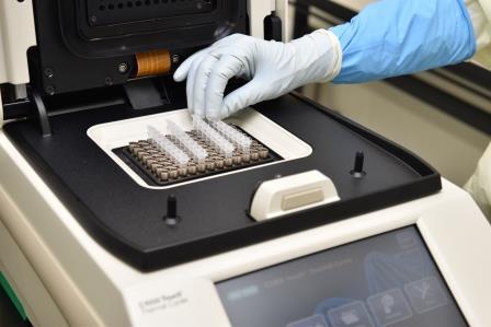 ラボ内PCR検査装置