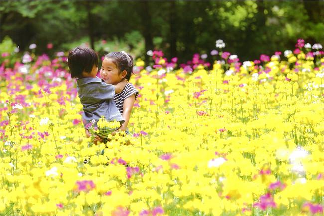 富士花鳥園フォトコンテスト 2015年優秀賞 鈴木勇介様 「笑顔のあふれる場所」