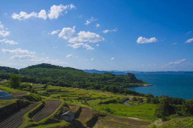 瀬戸内国際芸術祭では、アートとともに瀬戸内の島々の美しい自然も楽しめます。