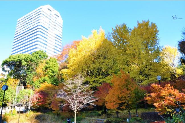 清水谷公園