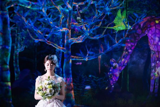 ヒルトン福岡シーホーク チームラボフォレスト福岡 - SBI証券 婚礼前撮りプランイメージ