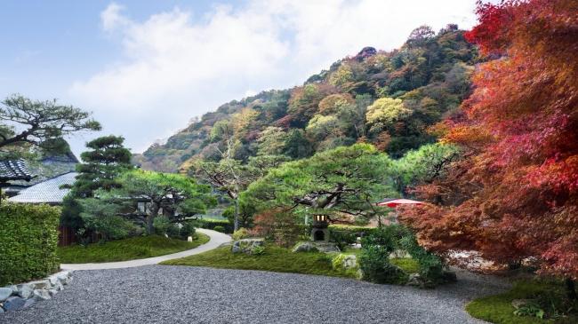 翠嵐 ラグジュアリーコレクションホテル 京都 嵐山を借景とした日本庭園 秋イメージ