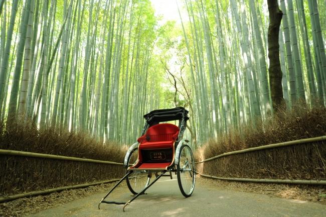 嵯峨野の竹林と人力車イメージ