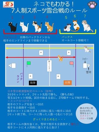 ネコでもわかる雪合戦ルール 日本雪合戦連盟に基づく