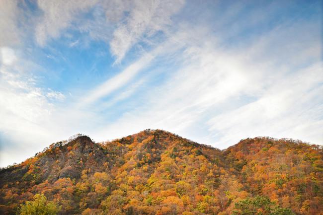 昨年(2019年)の11月上旬の景色 かじか荘の温泉から見える秋の山の様子