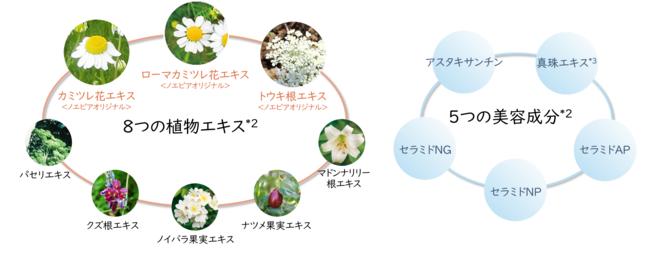 8つの植物エキスと5つの美容成分