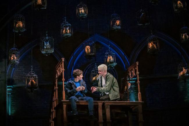 ポッター と 子 の ハリー 呪い