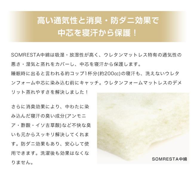 SOMRESTA(R)中綿