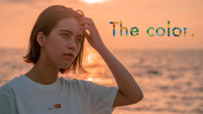 アパレルブランド「The color」