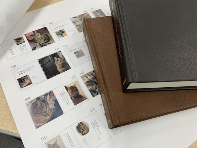 1ページごとに異なるレイアウト ※画像は制作中のイメージです。実際の商品とは異なります