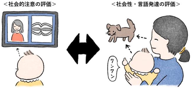 本研究のイメージ図