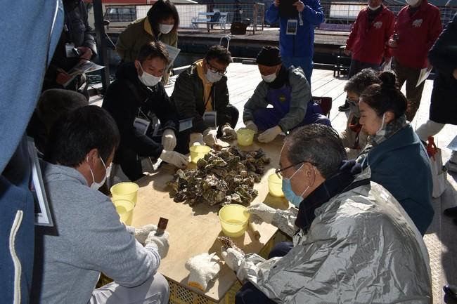 牡蠣剥き体験