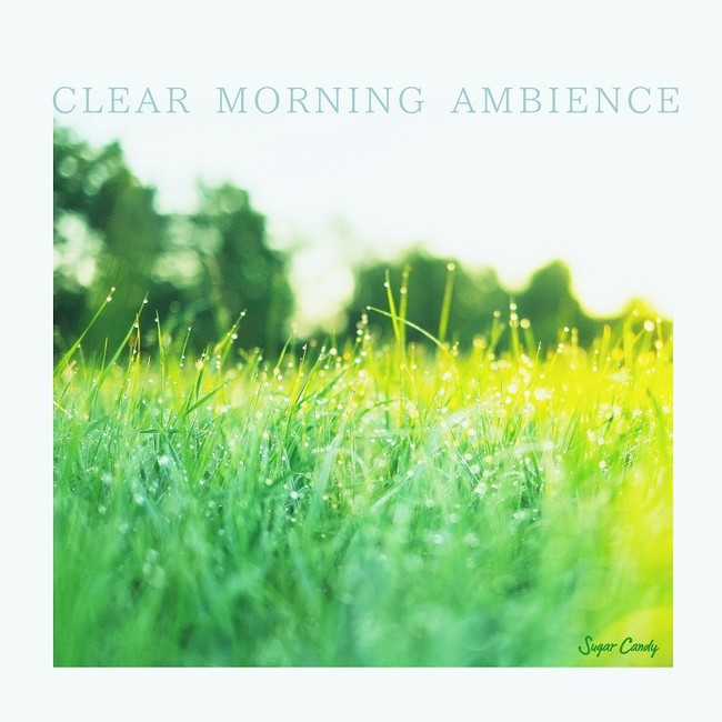 CLEAR MORNING AMBIENCE
