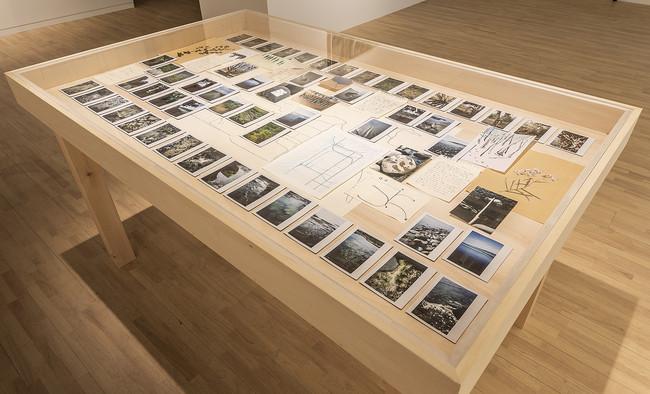 エレナ・トゥタッチコワ 《知床:線と落書きと言葉とほかの資料》(2018-2021) ドローイング、インスタントフィルム写真