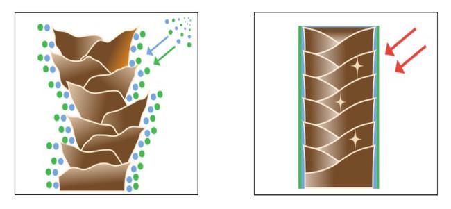 ブロー熱で成分が反応・結合、髪の外部に定着しサラサラ感が持続
