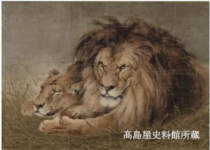 下絵 ≪獅子図≫ 日本画家・神坂松濤 明治中期~大正期 紙本着彩