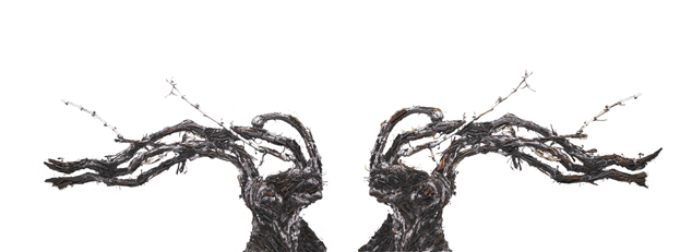 【世界最古のシャンパーニュ・メゾン ルイナール】視覚芸術の魔術師 ヴィック・ムニーズとのコラボレーション作品を「KYOTOGRAPHIE 京都国際写真祭 2019」にて日本初公開!