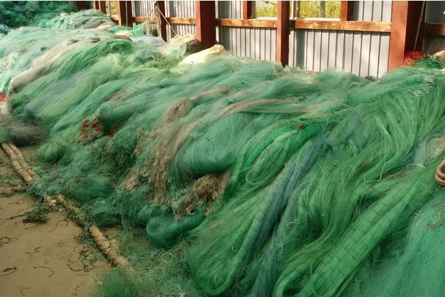 回収された廃漁網