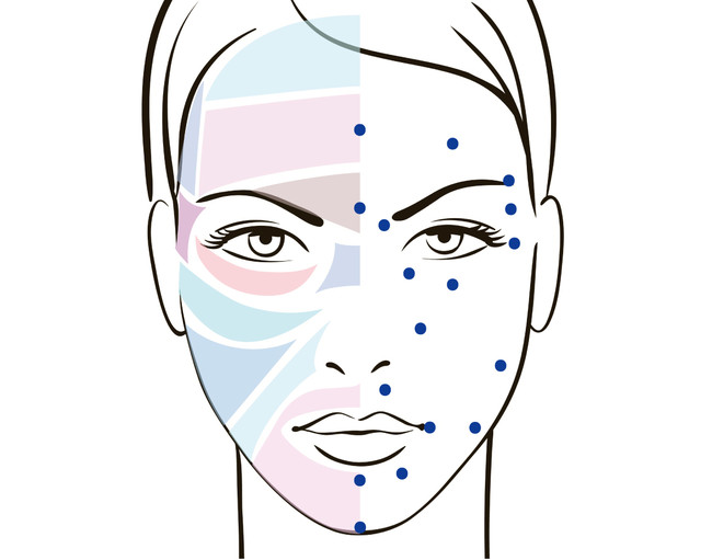 顔の反射区とポイント