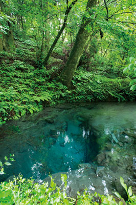 水汲みに訪れる人も多い、美しいブルーの泉