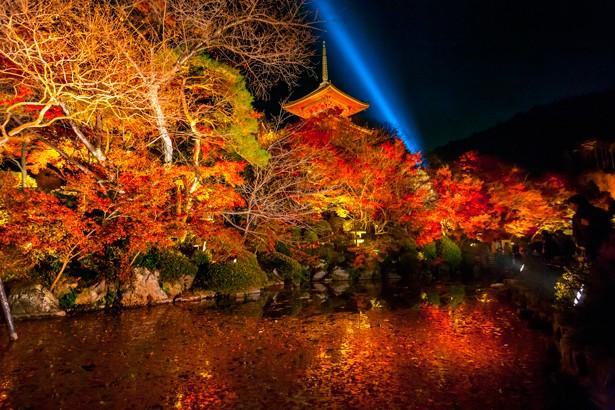 京都屈指の紅葉スポット「清水寺」。   美しさは格別