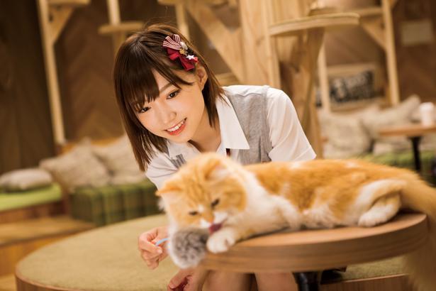 関西ウォーカーの人気連載「NMB48と猫カフェ」も全部見せ!未公開カットは4ページにわたって掲載。