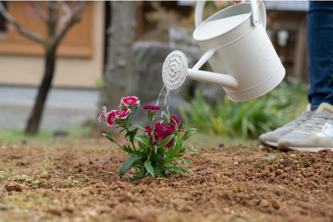 お好みのお花や樹木を植えて