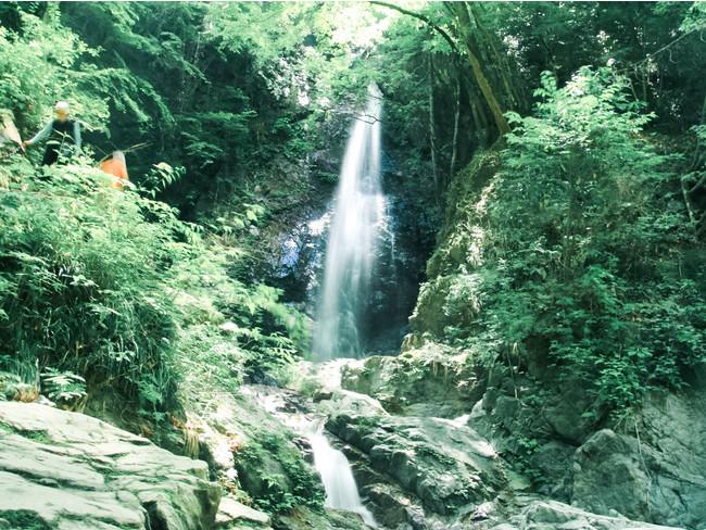 清涼な空気に包まれる払沢の滝