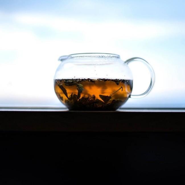 SOUSUKE 柿の葉茶